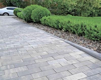 Тротуарная плитка Колор-микс Брусчатка 200х100х40